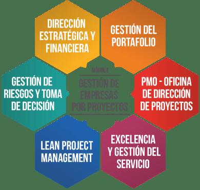 Master Proyectos. Titulo oficial universitario en Gestión Avanzada de Proyectos (UCAM). Incluye preparación para la Certificación PMP del PMI (Project Management Institute).